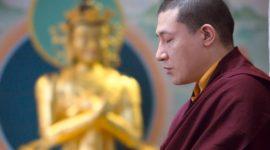 保持心識平靜/如何平衡照顧自己與慈悲照顧他人