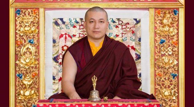 第十七世大寶法王嘉華噶瑪巴泰耶多傑於衛塞節前夕分享的信息