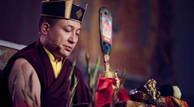 第十七世大寶法王嘉華噶瑪巴禪修指導